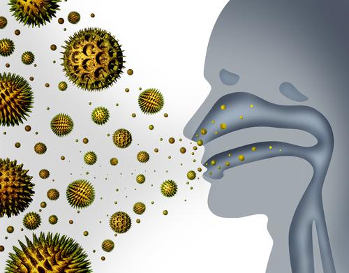 OPC Kapseln Allergien